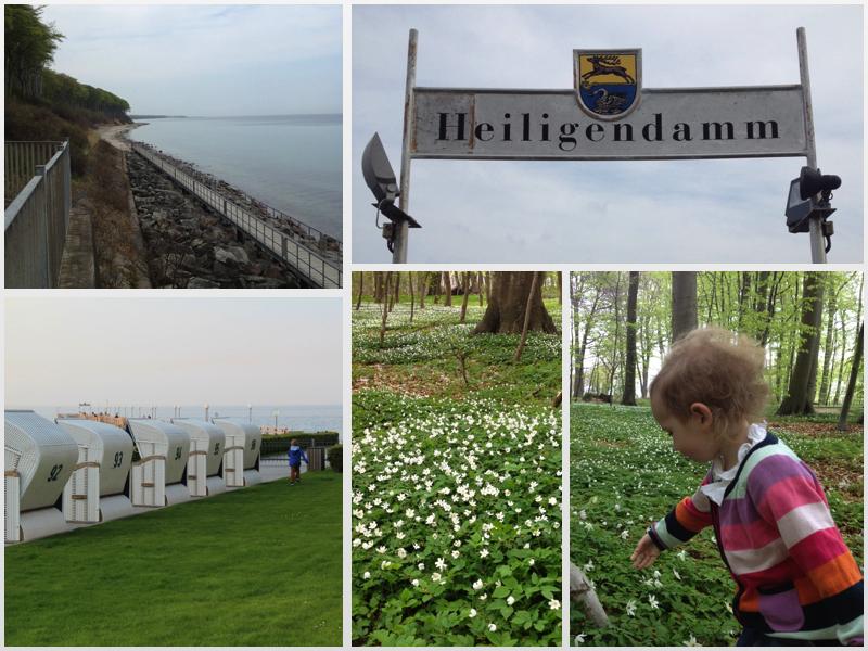 Von der Großstadt in die Weiße Stadt am Meer: Grand Hotel Heiligendamm, Morgendliche Idylle im Wald und am Strand