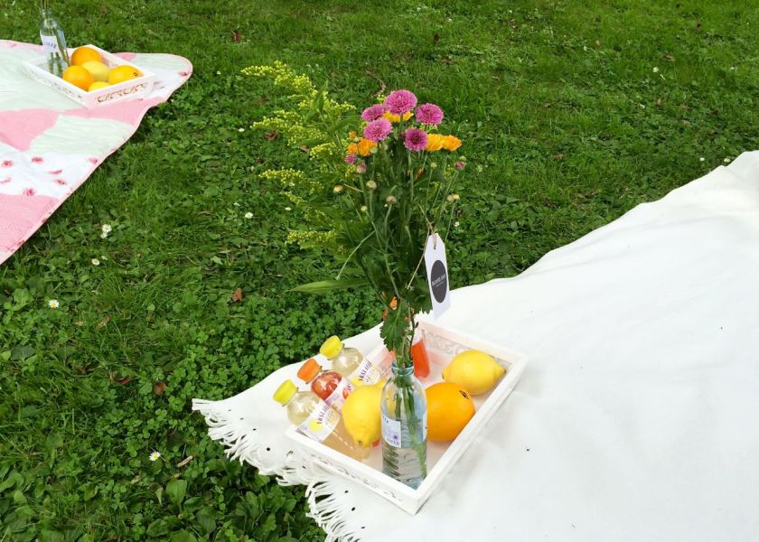 Sommer-Picknick mit dem JOOLZ Day Earth