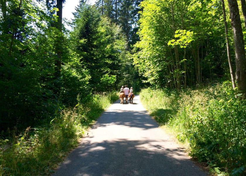 Schweiz: Jura & Drei-Seen-Land mit Kindern: Ein Ausritt mit den Ponys von der Topeka Ranch