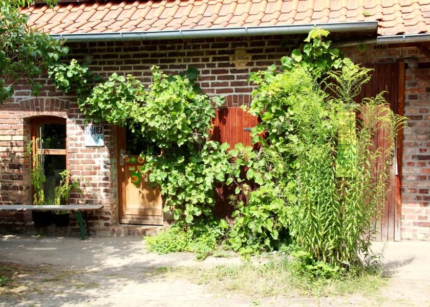 Ferienwohnungen, Filzwerkstatt, Bioladen und Hofcafé sind im Haus Vogelsang in Lychen untergebracht.