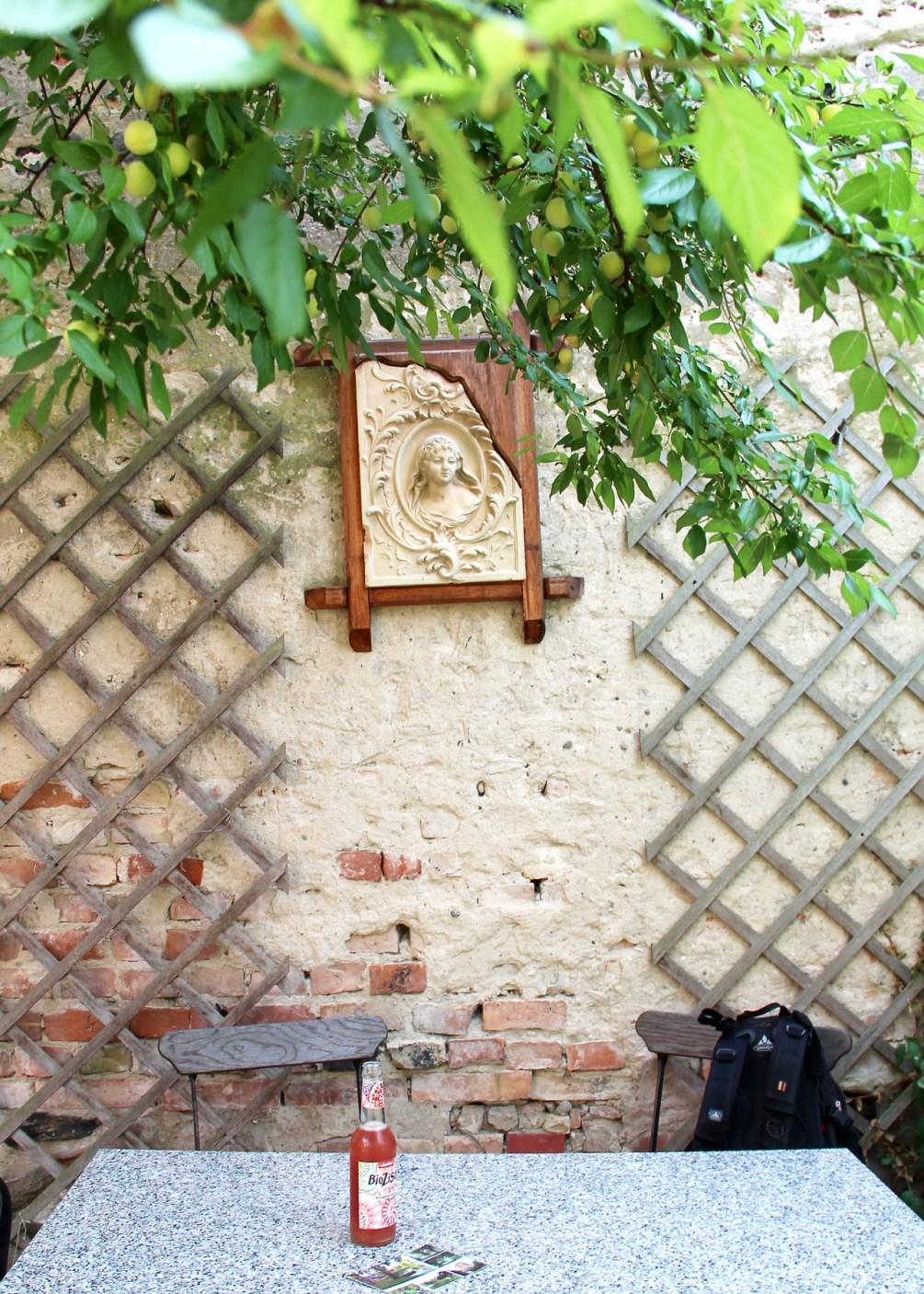 Hof Café im Haus Vogelsang Lychen: Ein lauschiges Plätzchen mit schöner Dame unter Mirabellenzweigen