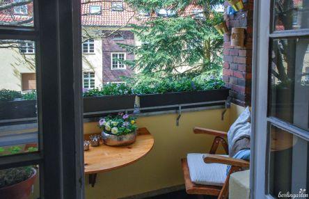 Zusätzlich zu den Kästen gibt es Blüten auf dem Tisch, vor den Fenstern und an der Wand