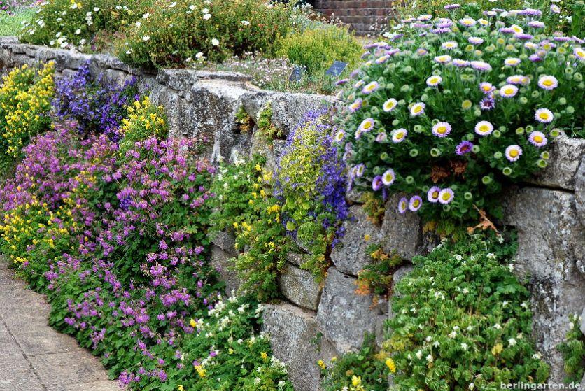 Bepflanzte Mauer