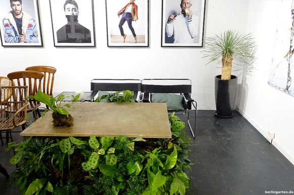 Im Showroom ein Stelldichein von Designklassikern, Antiquitäten und aktuellen Arbeiten. Hier ein an den Seiten bepflanzter Tisch