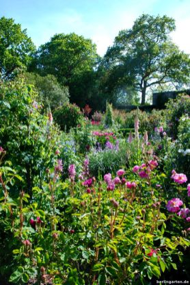 Blick über die quadratischen Beete des Rosengartens