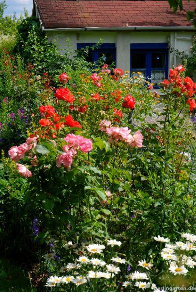 Blumen den Beeten und Peace den Lauben