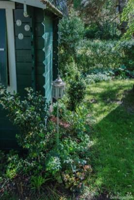 Schattengarten mit Blattschmuckstauden
