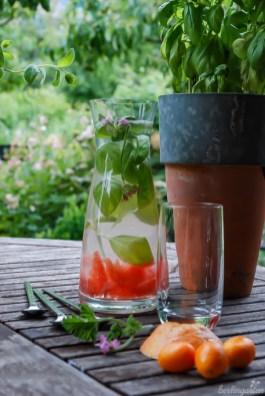Grapefruit in Gesellschaft von Basilikum und Rosenpelargonie: Der Phantasie und den Anlässen sind keine Grenzen gesetzt