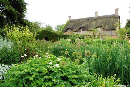 Der Old Garden besteht aus zwei riesigen Cottage-Beeten
