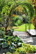 Durch den Rosenbogen von der Seite des Hauses auf das Beet an der Steinwand