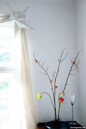 Fenster mit Mohngesteck