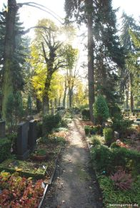 Verwunschen liegen die Gräber