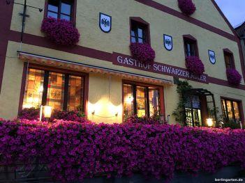 Gasthof Schwarzer Adler im Petunienkleid