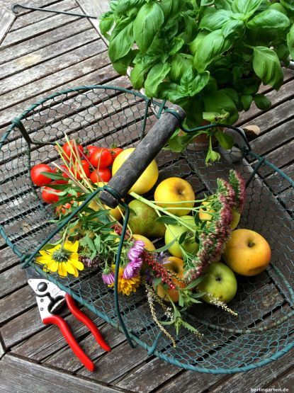 Frisch geernete Herbstfreuden: Blumen und Obst