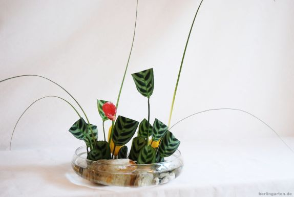 Ikebana Freestyle mit frisierten Blättern