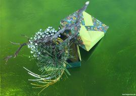 Ein flaches Ikebana auf grünem Untergrund