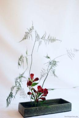 Ikebana mit Inkalilien