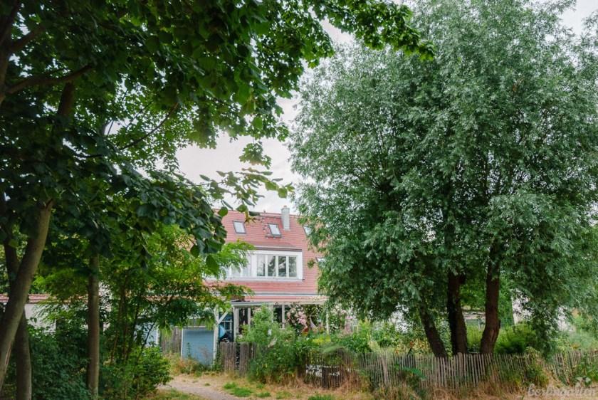 Isabels Garten Hinteransicht