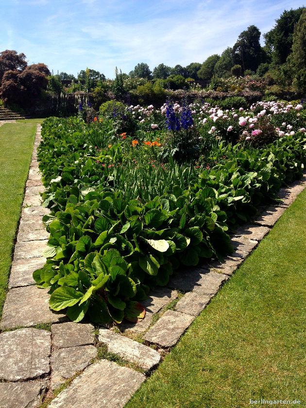 Orange Lilien im Prachtgarten von Hestercombe mit Päonien und Rittersporn