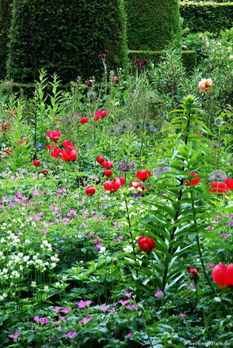Päoniengarten in Hidcote