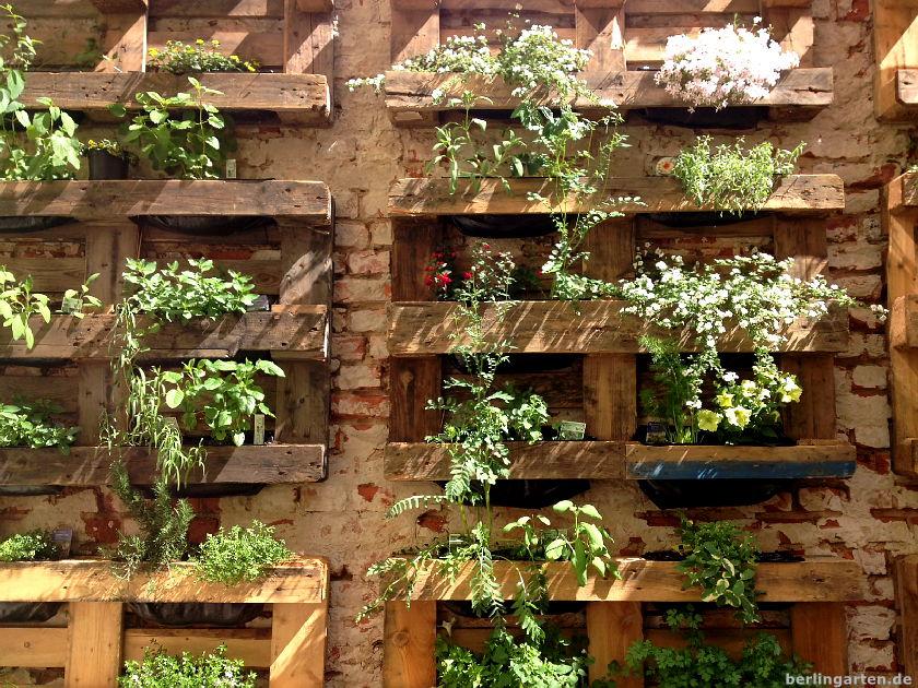 vertikales gaertnern bepflanzte paletten