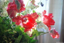 Dieses Foto widme ich Edith und grüße sie von Herzen! Noch einmal Tulpen genießen
