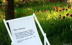Poesie-Stühle im Britzer Garten