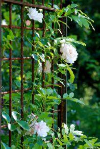Aus schlichten Materialien wurde ein Rosenbogen gefertigt