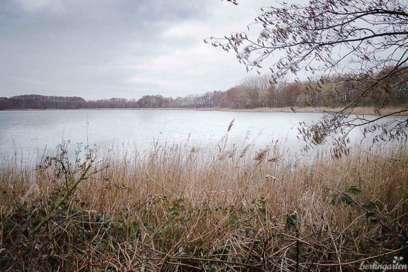 Spaziergang am Kähnsdorfer See