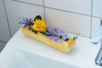 Sommer im Bad mit Aster und gefüllter Staudensonnenblume