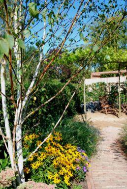 Ohne Rasenfläche, aber unkomplizierten Gehölzen und Stauden lässt der Garten zum Genießen