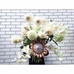 Strauß Dahlien, Protea, Orchidee, Schneeball