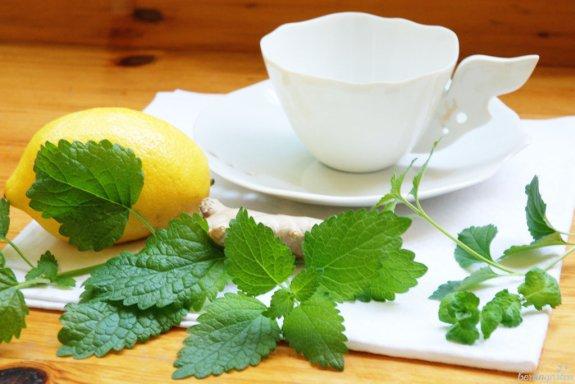 Teekräuter