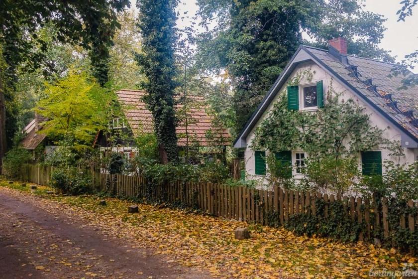 Herbst Meedehorn