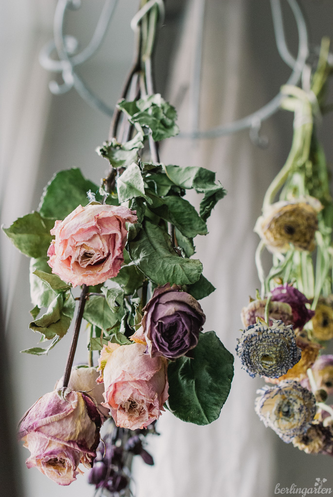 Kopfüber Blumen trocknen