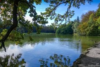 Nördlicher See Nymphenburg