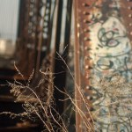 dry weeds with rusty bridge