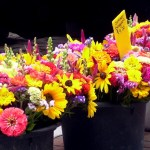 flowers in buckets at the market