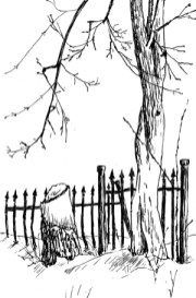 The Wrought Iron Fence