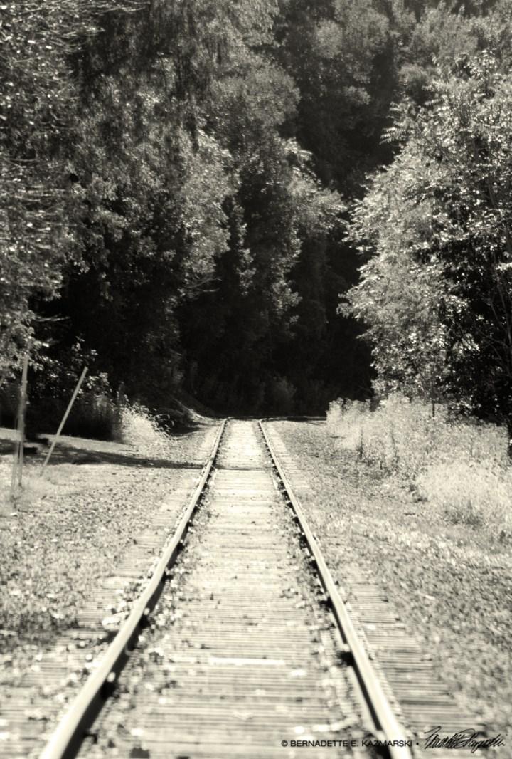 Bend in Tracks