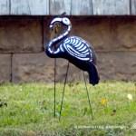 Seasonal Flamingo