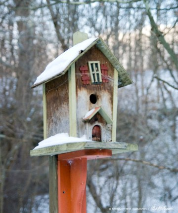 Orange birdhouse
