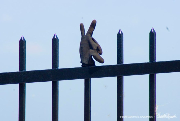 glove on wrought iron fence