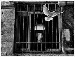 Çîroka Kela Cansizê - Mihemed Hemkoçer