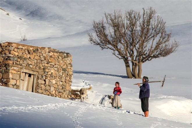 Li Serhedê Rojên Zivistanê - Yücel Aslan