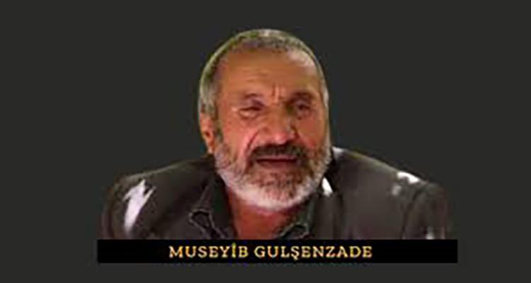 Museyîb Gulşenzade