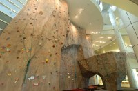 The Best Home Bouldering Wall Design