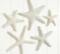 15 Best Large Starfish Wall Decors