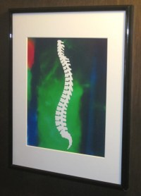 15 Collection of Chiropractic Wall Art