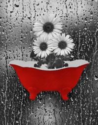2018 Popular Red Bathroom Wall Art
